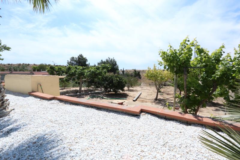 Elche Villa with Pool