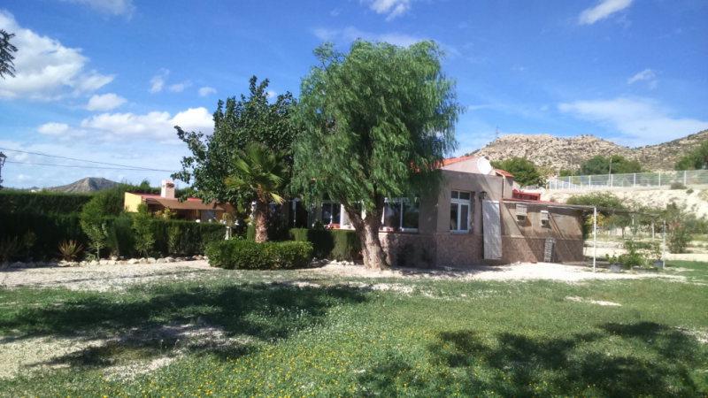 Property in Novelda | For Sale Villa Novelda
