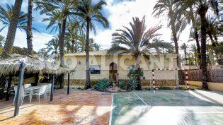Palm Grove Villa