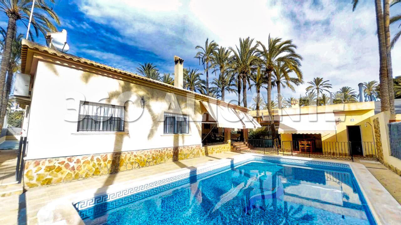 Palm Grove Villa in Elche with swimming pool