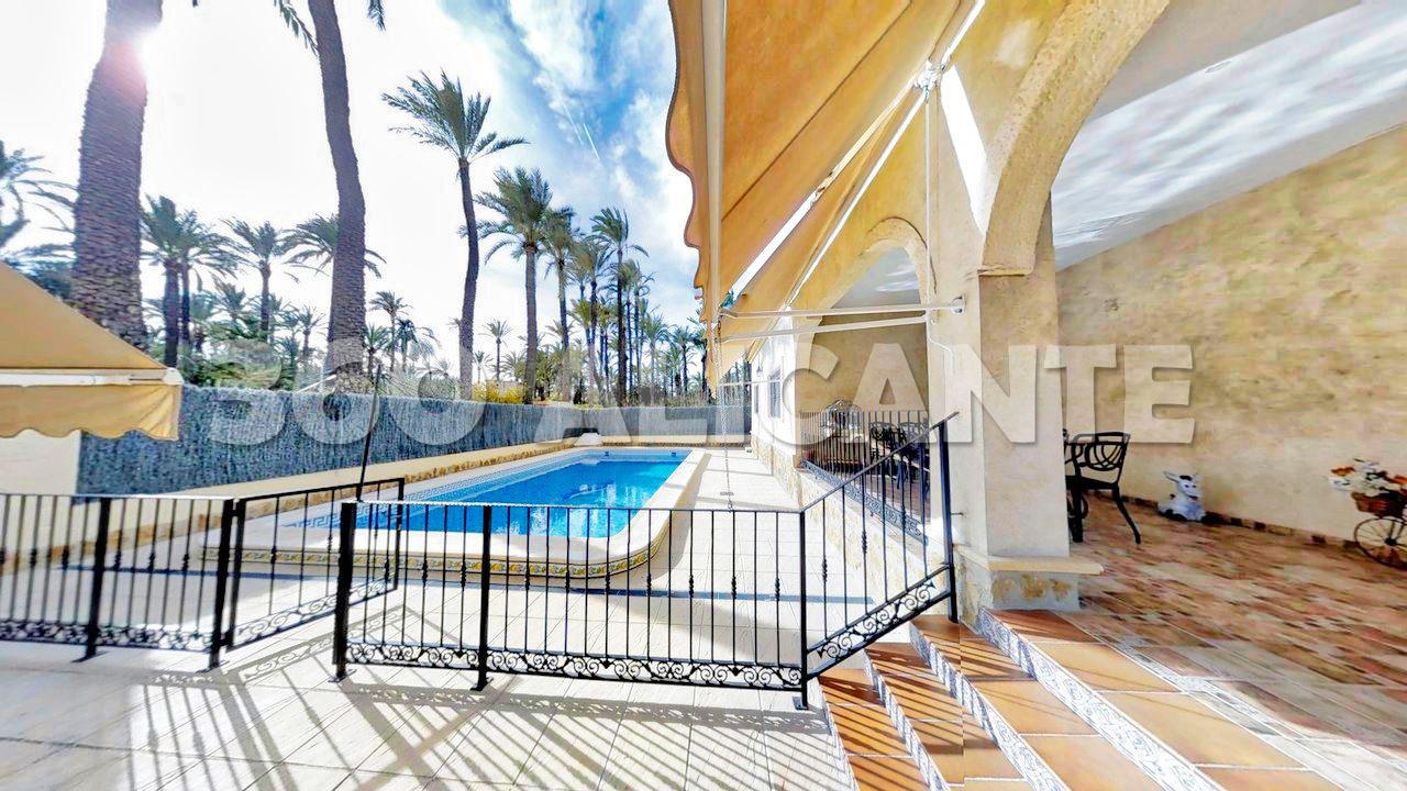 Palm Grove Villa in Elche with swimming pool
