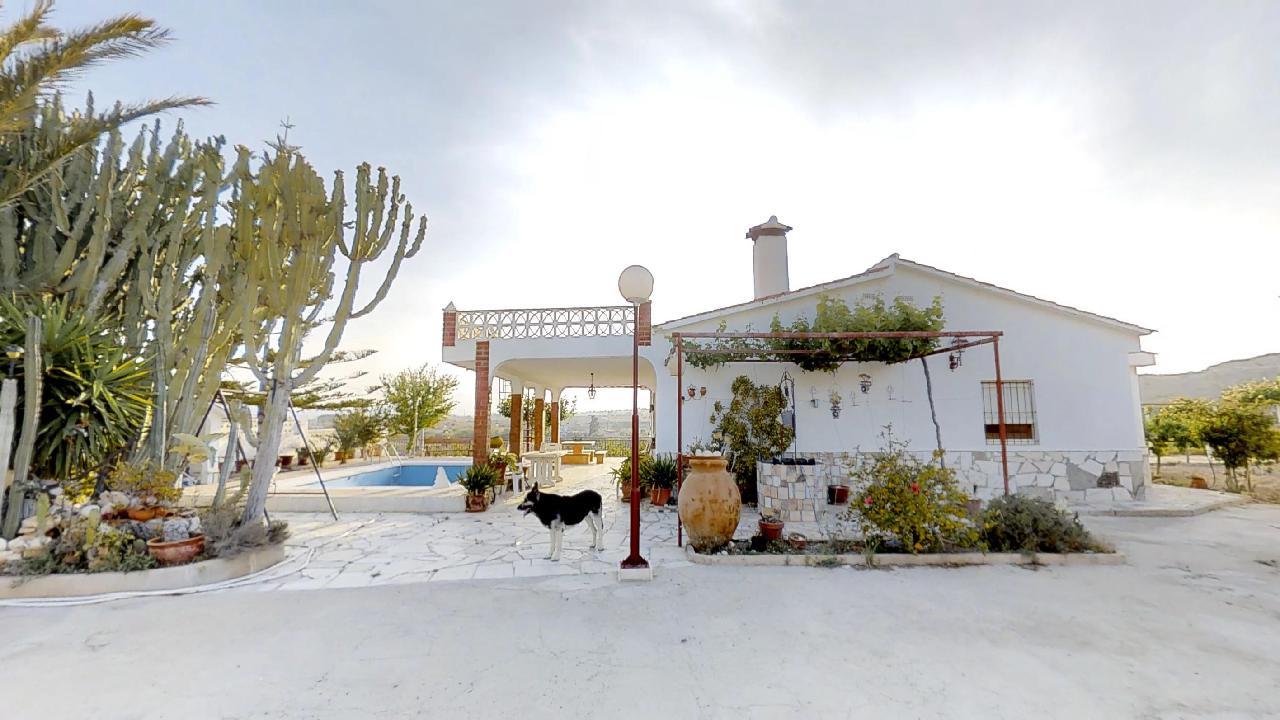 El Moralet Villa –  swimming-pool and 4.000m2 Plot